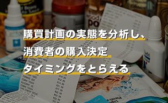 購買計画の実態を分析し、消費者の購入決定タイミングをとらえるの画像