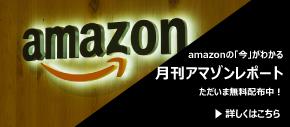 月刊アマゾンレポート