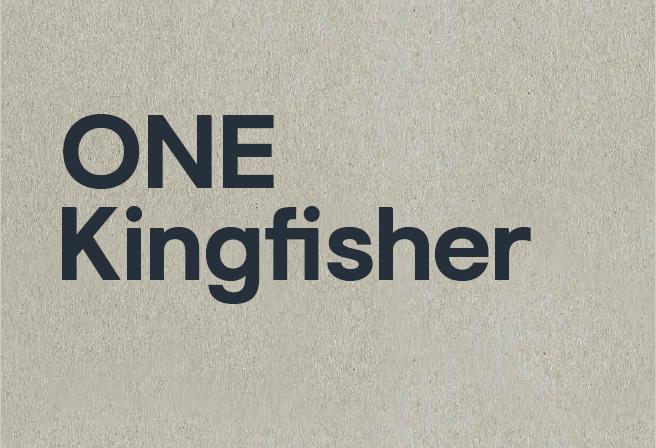 One kingfisher