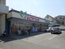 よどやは高知県DgS売上高トップの老舗企業だ