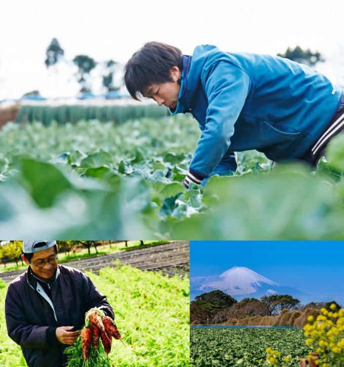 オイシックスが高校生向けに農業体験紹介サイトを開設