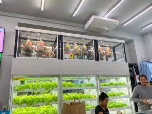 インファームは「店内水耕栽培」のシステムを開発・供給することで青果のサプライチェーンに変革をもたらした