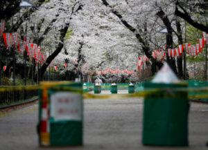 立ち入り禁止になった上野公園
