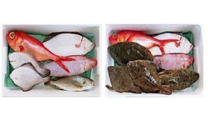 イオンリテールがネットスーパーで販売する鮮魚詰め合わせセット