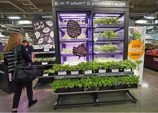 次世代型屋内垂直農法と呼ばれるインファームの栽培設備