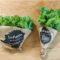 インファームの野菜