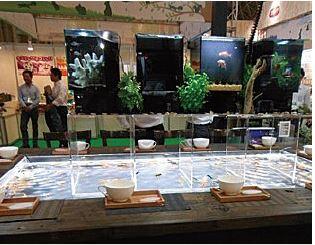 「第56回JAPAN DIY HOMNECENTER SHOW 2020 ONLINE」でジャペルが行った、新しいタイプの金魚すくい