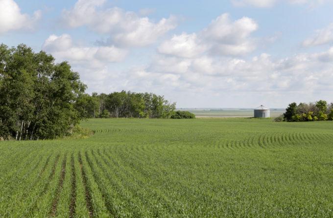 カナダの農地