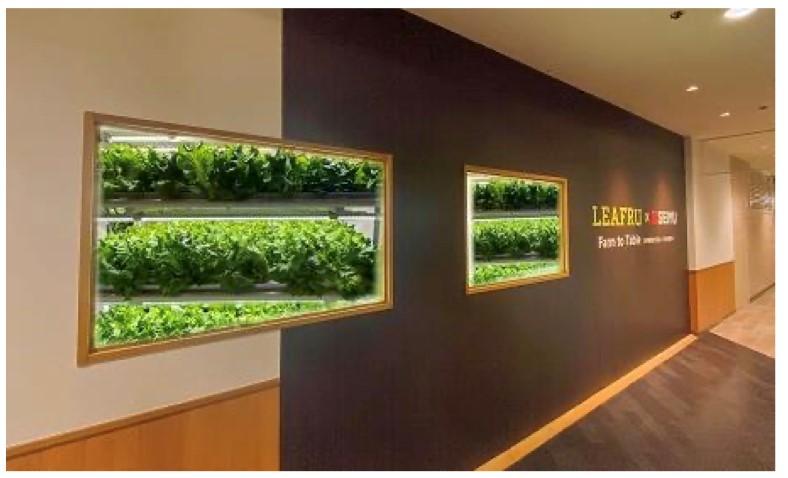 プランツラボラトリーが開発した植物工場「プットファーム」の外観イメージ